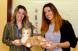 Sabrina Cabral and Stana Cvitan, Recreation Technicians at the Donald Berman Jewish Eldercare Centre are using robotic pets as an intervention tool.